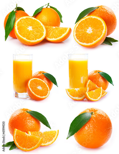 canvas print picture Collection of orange with juice