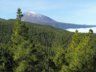landscape with Teide volcano, Tenerife, Canary Islands