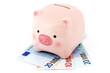 Piggy bank on the Euro banknotes