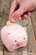Putting fifty cent  into the piggy bank
