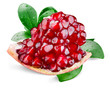 Pomegranate with leaves. Piece isolated on white background