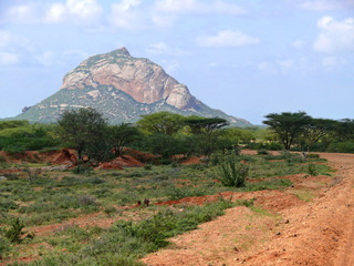 Mountains. Landscape nature. Plants and Trees. Africa, Kenya.