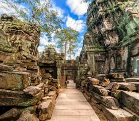 Ancient architecture. Ta Prohm temple, Angkor Wat, Cambodia