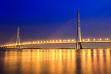 beautiful cable stayed bridge at night in nanjing