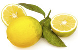 citron bio sans pesticides poster