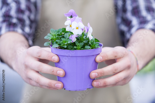 Man Holding Potted Flowers