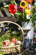 Osterkorb im Garten