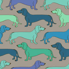 Seamless pattern of Dachshund dogs