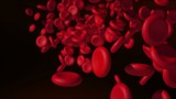 Digital motion graphic of red blood cells flowing through veins