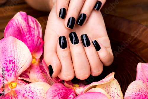 Belles femmes mains avec manucure noir Poster