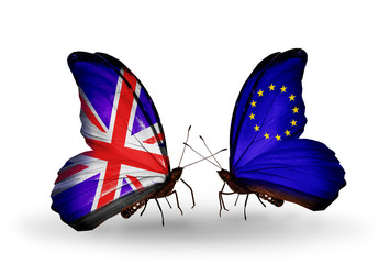Two butterflies with flags UK and European Union