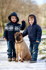 Little boys with their dog in the park