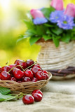 Fresh organic cherries in wicker basket