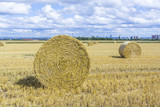 bale of straw on fields with blue sky
