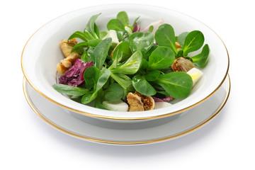 fresh corn salad on white background