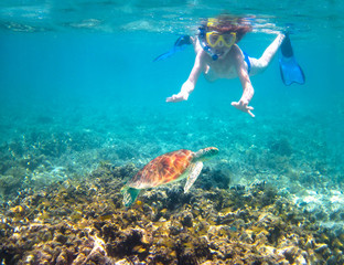 Child snorkeling in a tropical sea next to a turtle