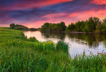 dramatic sunset over flowering meadow by river