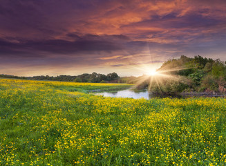 Colorful spring landscape on the siver with field of yellow flow