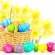 Easter basket filled with colorful eggs with daffodil background