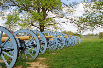Cannons at Valley Forge