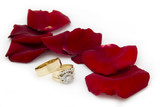 Wedding Rings by Rose Petals