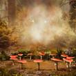 Baśniowy krąg grzybów w jesiennym lesie