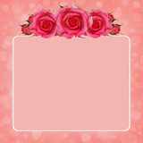 Pink background with rose flowers