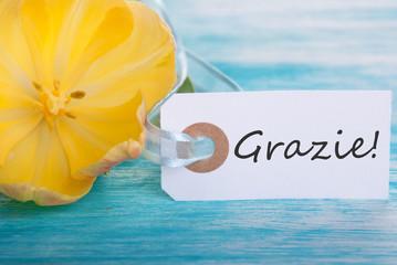Banner with Grazie