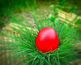 Red Easter egg