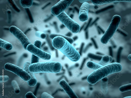 Bakterien 3D - 62053543