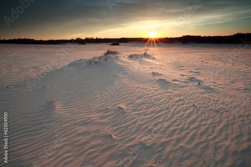 sunshine over windy sand dunes at sunset