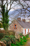 Cottage home on Irish country lane