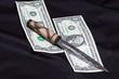 dollaro con coltello