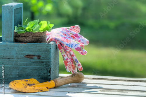 Garden tools in a blue wooden tool box