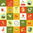 Organic Icons Set - Isolated On Background