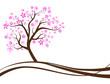 Baum mit lila Blüten