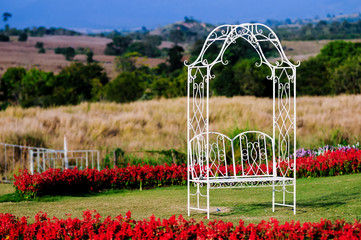 Bench in romantic field