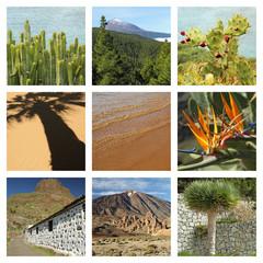 images of wonderful Tenerife island collage