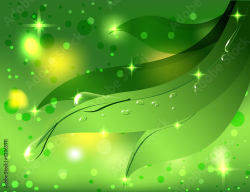 beautiful green background with leaves and dew drops