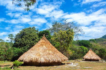 Two Indigenous Huts