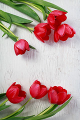 Red tulips on white wooden board