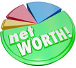Net Worth Pie Chart Wealth Value Compare Assets Debts Graph