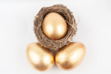 Golden eggs and bird nest