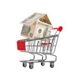 New house in the shopping cart