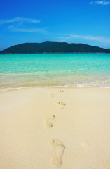 Serene view of footprints in the sandy beach
