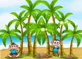 A beach with tall coconut trees and playful monkeys