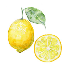 Watercolor background fresh limon. Sign / Symbol