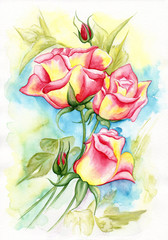 Watercolor illustration of a beautiful roses flowers