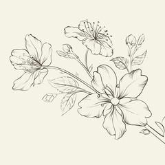Calligraphy cherry blossom.
