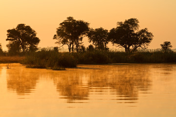 Trees and reflection, Kwando river